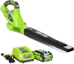 Greenworks 40V 150 MPH Variable Speed Cordless Leaf Blower,