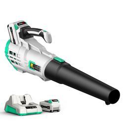 40v cordless brushless leaf blower w 2