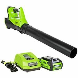 40V Electric Leaf Blower, 430 CFM / 115 MPH, 2.0Ah Battery C
