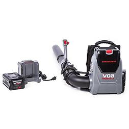POWERWORKS 60V Backpack Blower, 5.0Ah Battery and Charger In