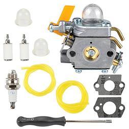Buckbock 308054034 308054014 Carburetor with Tune Up Kit for