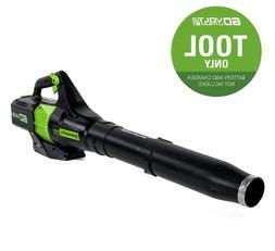 cordless electric leaf blower 60 volt lithium