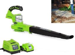 Cordless Leaf Blower Electric Battery Powered With Charger V