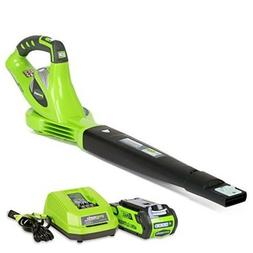Greenworks Cordless Leaf Blower Rechargeable With Battery El