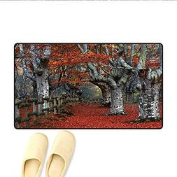 Doormat,Dreamy Gated Beech Trees Forest with Fall Leaf Mothe