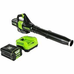 Greenworks BL80L2510 80V Jet Electric Leaf Blower, 2.5Ah Bat