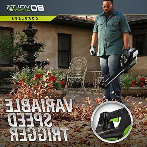 Greenworks DigiPro Cordless Jet Leaf
