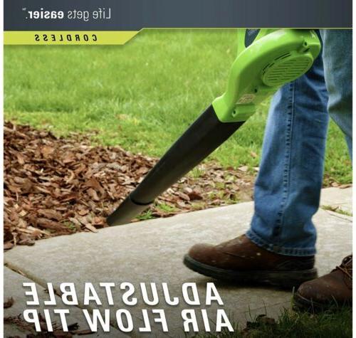 GreenWorks Lithium-Ion Leaf Tool