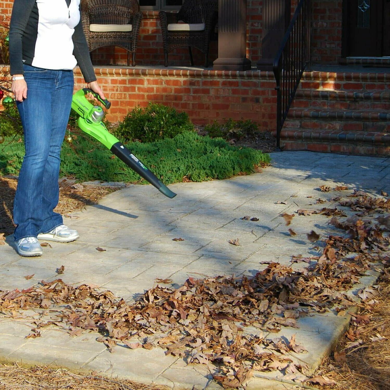 Leaf Sweeper 24 Powered Dual
