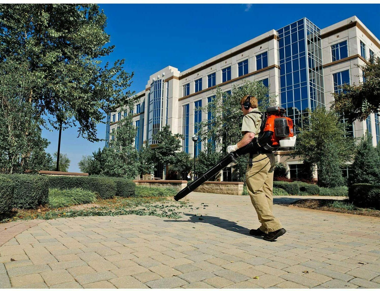 NEW Backpack Blower Leaf 350BT Powered