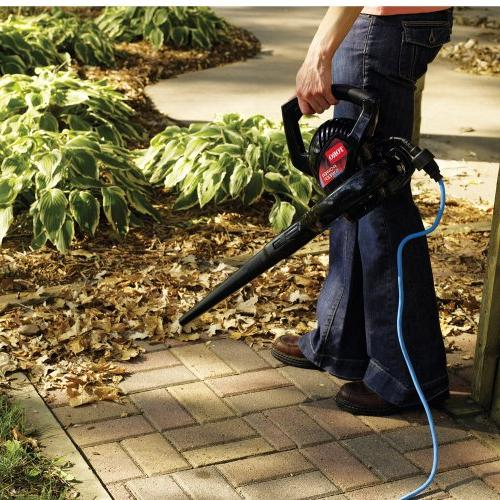 Toro Power Sweep Amp Hand-held Electric Leaf