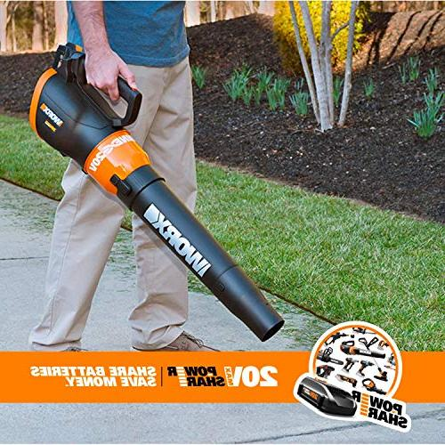 Worx 20V Grass and Blower Combo